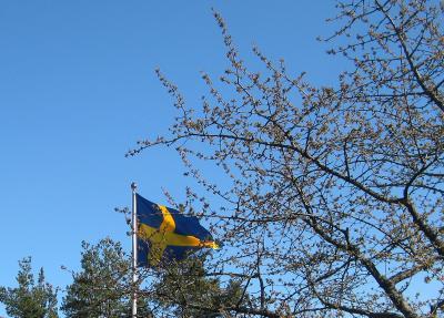 Vår vackra flagga ...