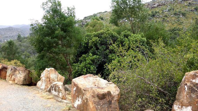 Stenarna ligger som tryggt skydd så att vi inte ska rasa ner i dalen ...