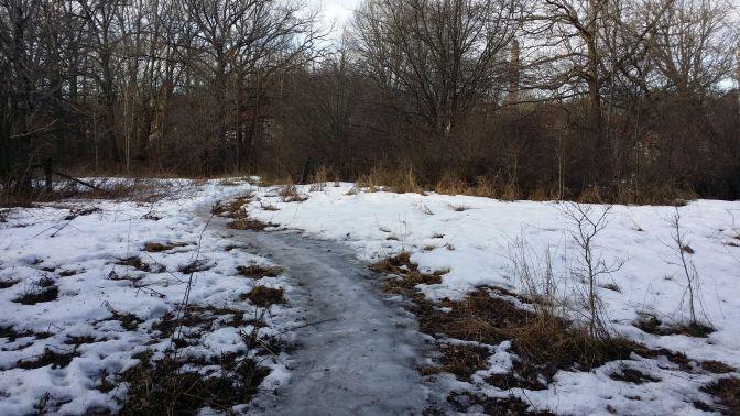 Men i den här gläntan låg det snö kvar - jätte kul att få plumsa lite ...